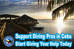 Start Giving Your Help Today